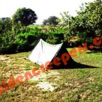 tent-stay-near-gurgaon-delhi
